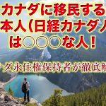 カナダ移民する日本人(日系カナダ人)は○○な人!永住権保持者が徹底解説