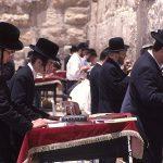 ユダヤ教の食事制限-日本人が知らない世界-